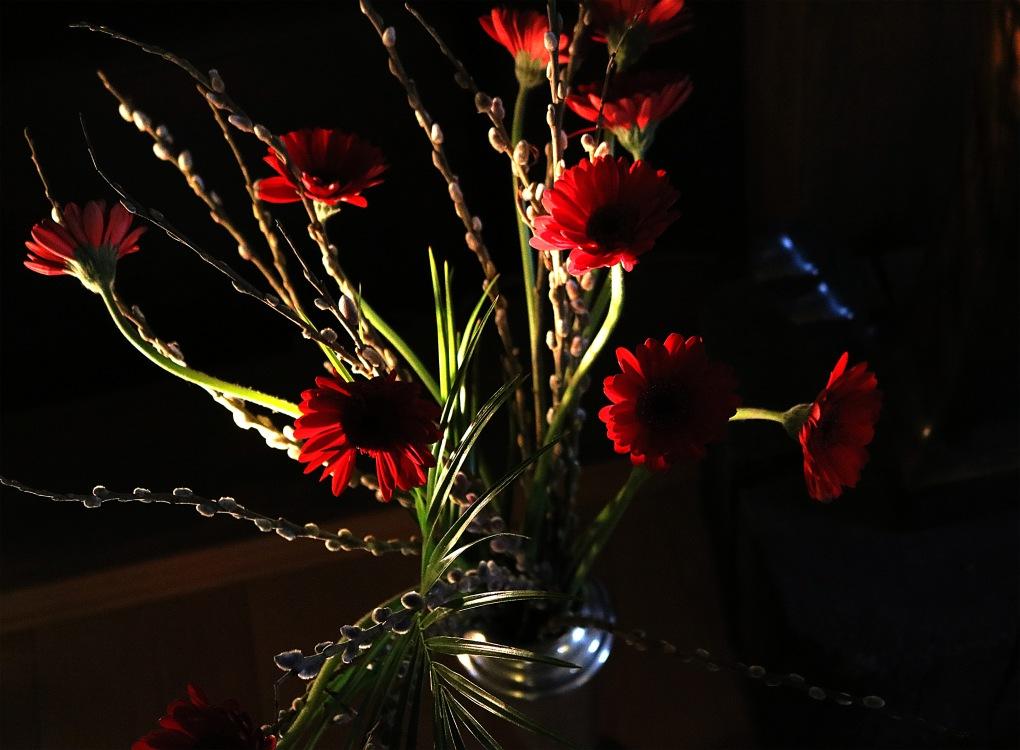 feb-flowers1