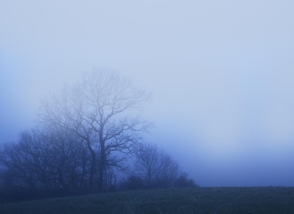 Nebel8a