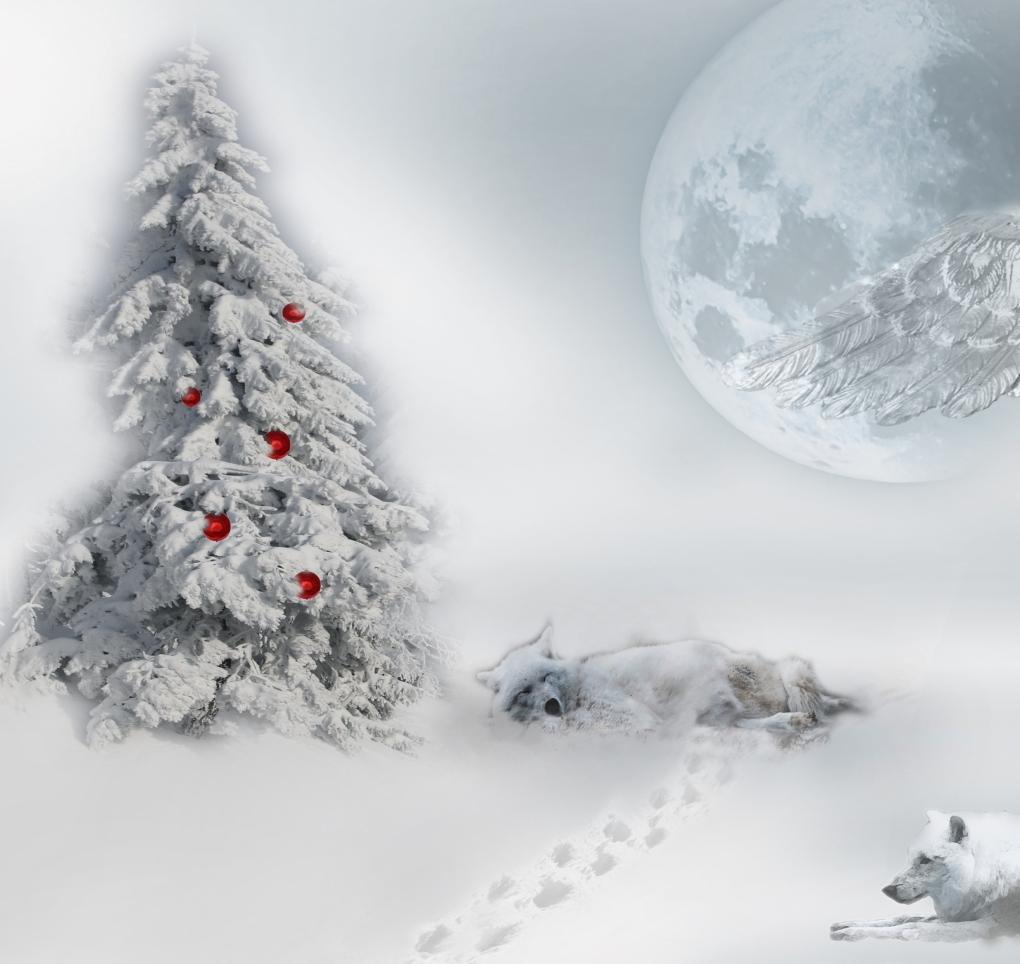 Weihnachten 2018_3