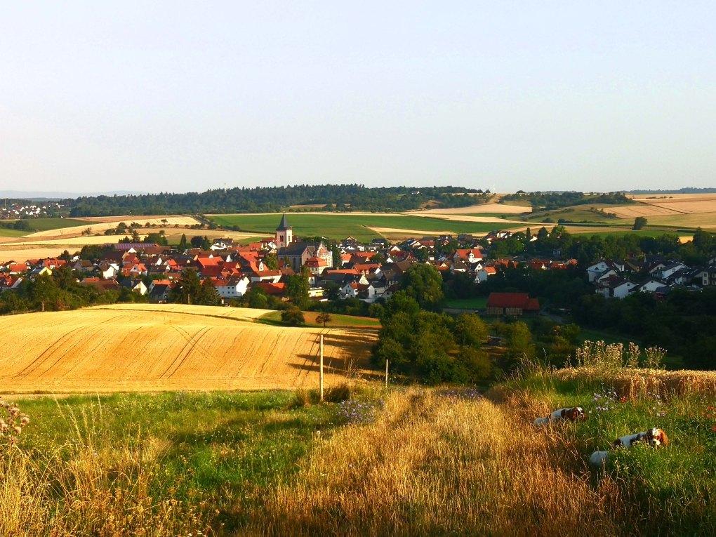 Dorf Ende Juli 2019.jpg