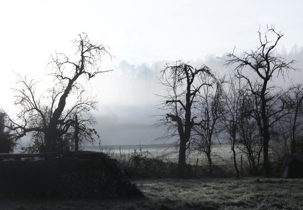 Nebel2a.jpg