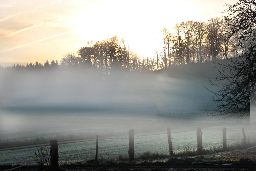 Nebel3.jpg