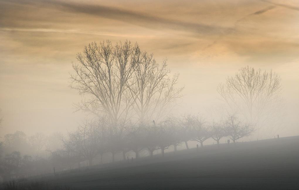 Nebel4.jpg