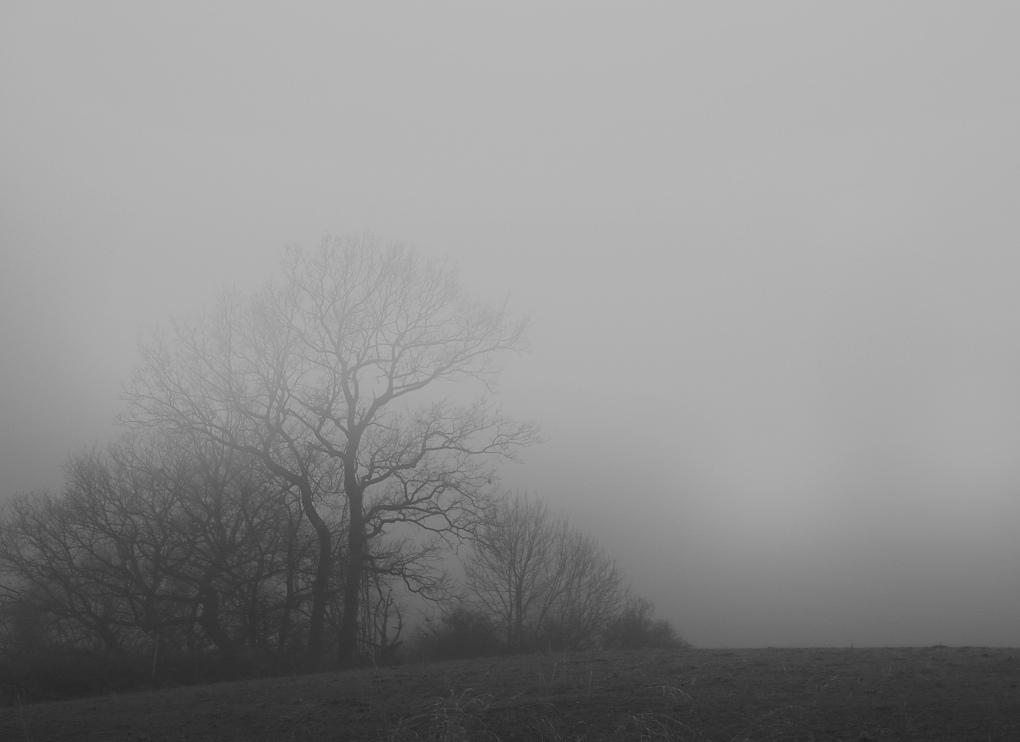 Nebel8aGrau.jpg