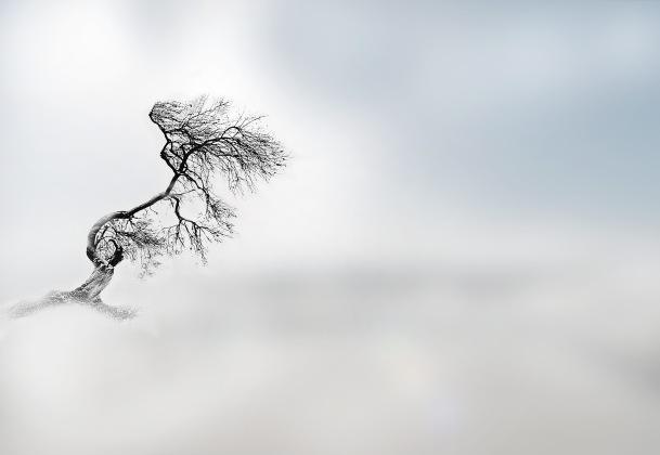 Windrauschen.jpg