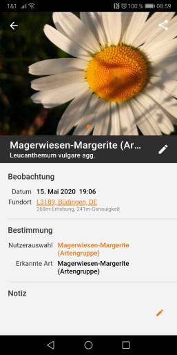 Screenshot_20200525_085906_com.floraincognita.app.floraincognita