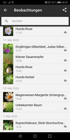 Screenshot_20200525_085918_com.floraincognita.app.floraincognita